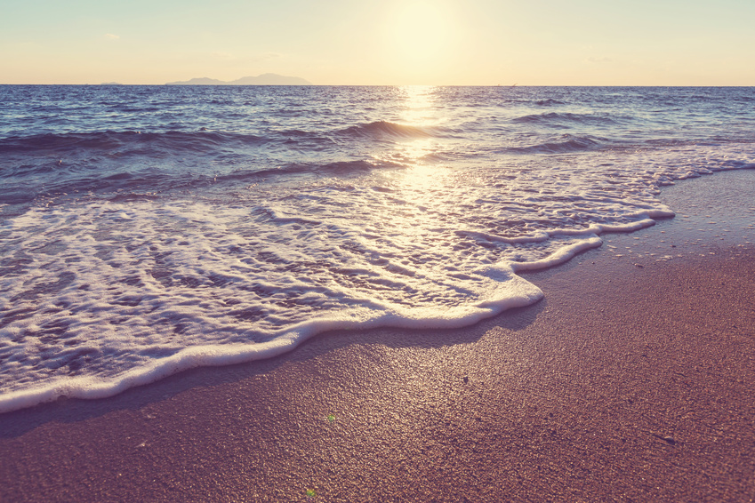 Beyond the sand things to do in vero beach visit vero for Crafts and stuff vero beach