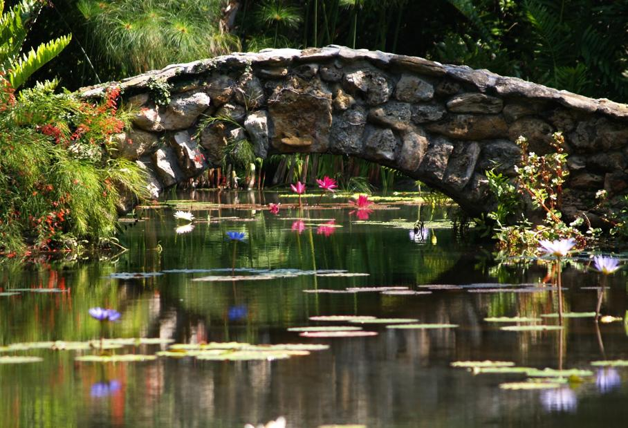 McKee Botanical Garden has long been a favorite of locals and tourists.