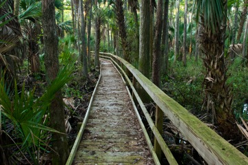 Fort Drum Marsh Conservation Area | Visit Vero Beach