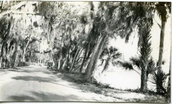 Historic Jungle Trail Visit Vero Beach Fellsmere Sebastian