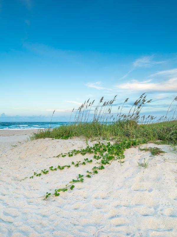 Vero Beach, Sebastian, Sebastian Inlet, florida beaches