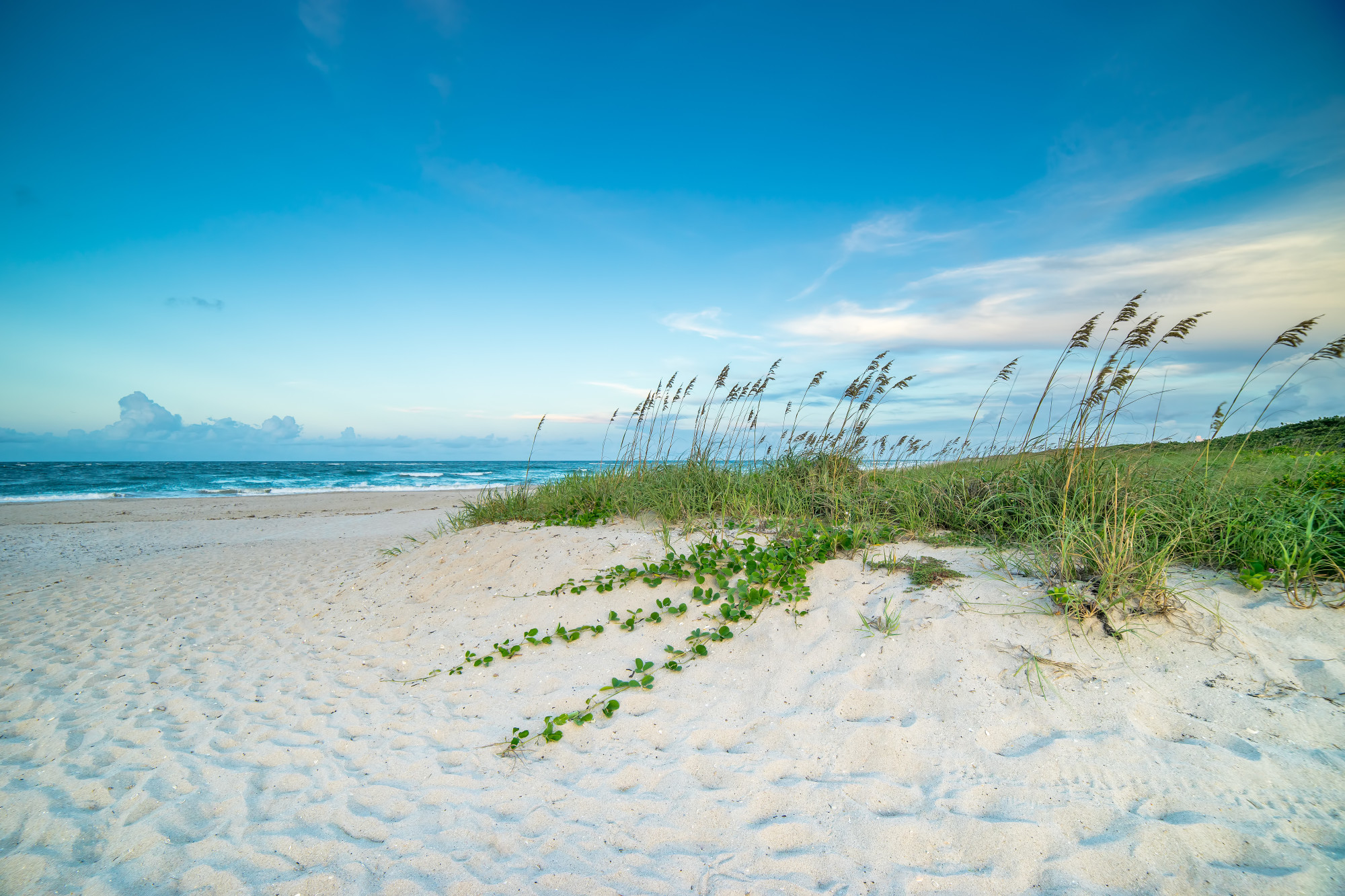 Visit Vero Beach Florida Official Travel Amp Tourism Information