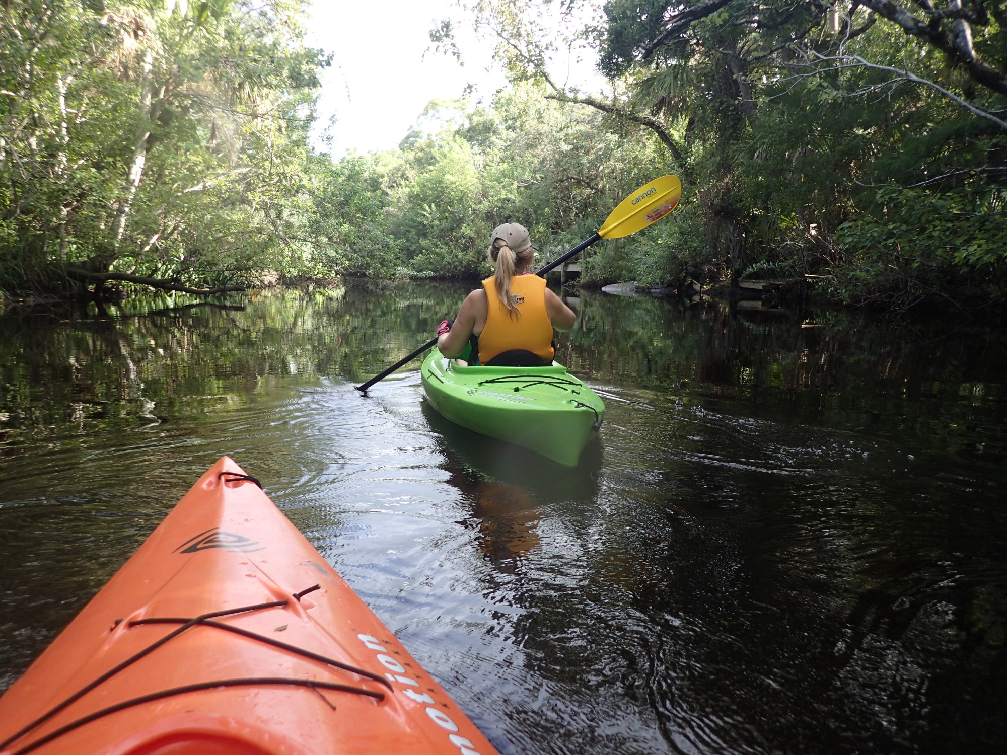 "Vero Beach, Fellsmere and Sebastian are filled with beautiful waterways and extensive areas of native wetlands and forests that we so carefully protect. There are numerous opportunities to explore a myriad of native habitats abounding with birds and other wildlife. Whether you enjoy hiking, bird watching, taking an exciting eco-tour, or quietly paddling with family or friends on an ""Old Florida"" river our county is the place to visit."