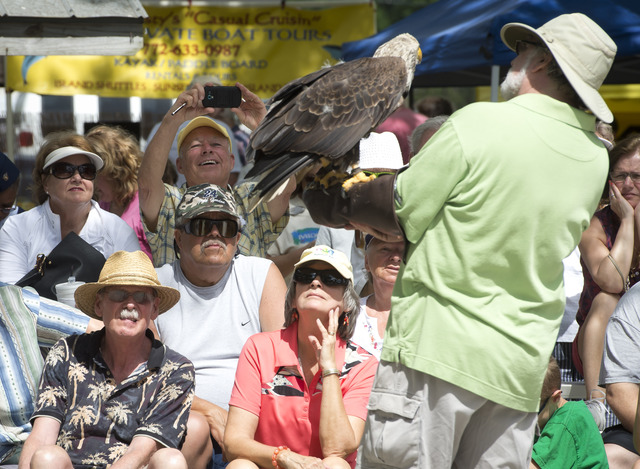 Images from the Pelican Island Wildlife Festival on Saturday, March 14, 2015. (SAM WOLFE/TREASURE COAST NEWSPAPERS)