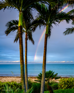 Todd Jackson | Vero Beach Photographer